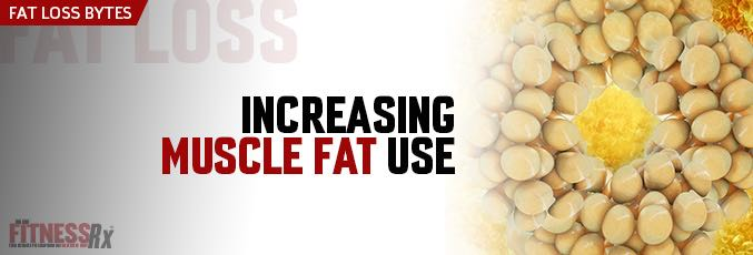 Increasing Muscle Fat Use