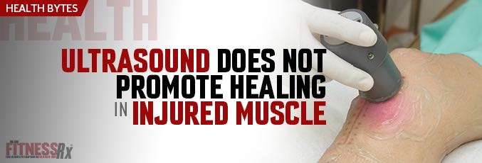Ultrasound Does Not Promote Healing in Injured Muscle