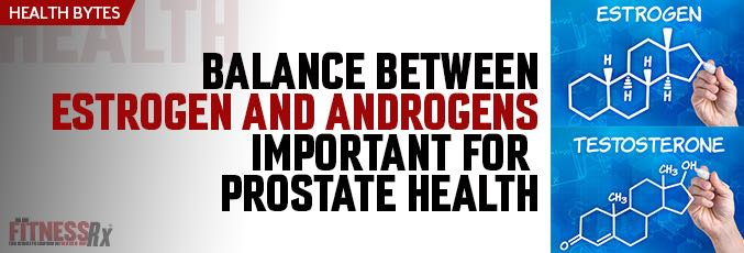 Balance Between Estrogen and Androgens