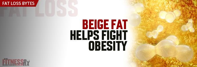 Beige Fat Helps Fight Obesity
