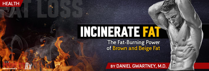 Incinerate Fat!