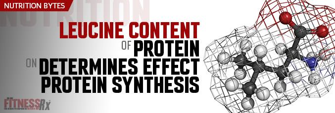 Leucine Content of Protein Determines Effect on Protein Synthesis
