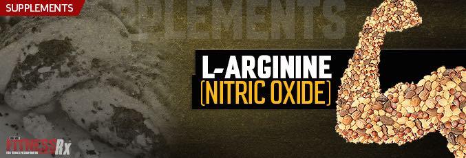nitric oxide and hypoxia essays biochem