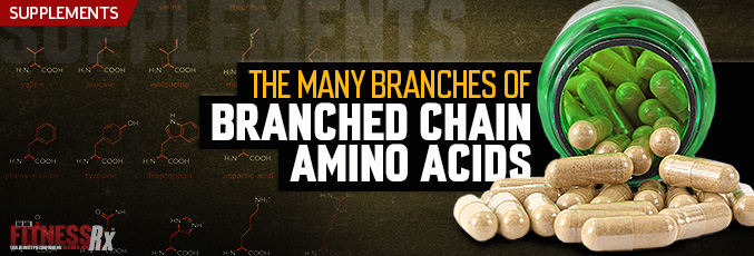 The Many Branches Of Branched Chain Amino Acids