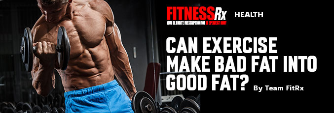 Can Exercise Make Bad Fat into Good Fat?