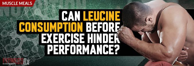 Can Leucine Consumption Before Exercise Hinder Performance?