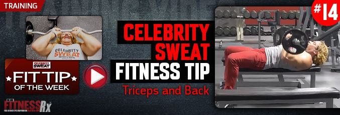 Celebrity Sweat Fitness Tip: Triceps and Back