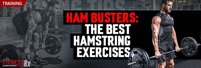 Ham Busters