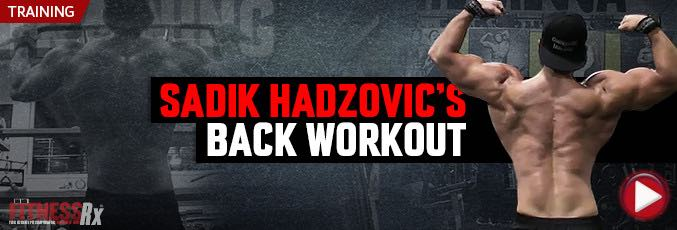 Sadik Hadzovic Back Workout