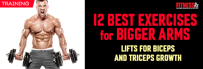 12 Best Exercises for Bigger Arms