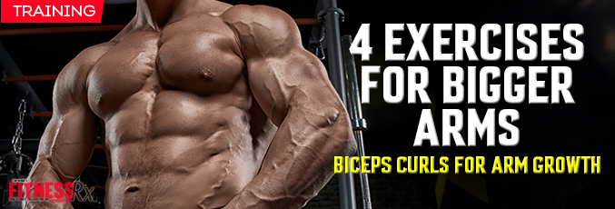 4 Exercises for Bigger Arms