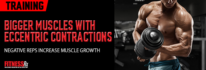 Bigger Muscles With Eccentric Contractions