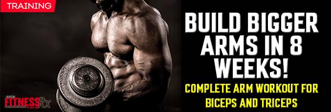 Build Bigger Arms in 8 Weeks