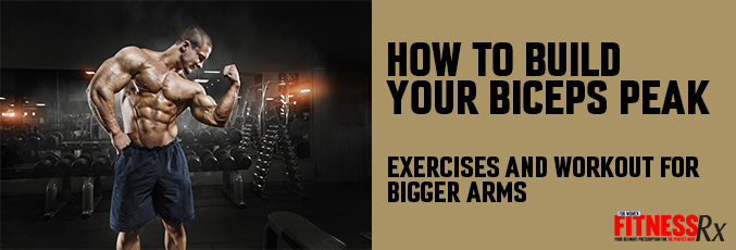 How to Build Your Biceps Peak