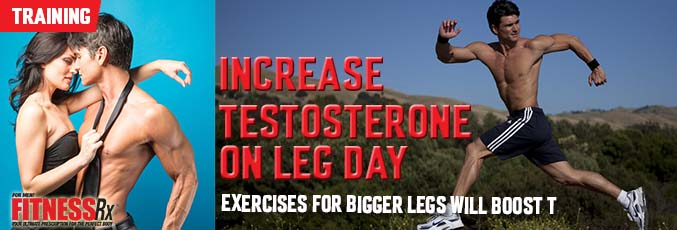 Increase Testosterone on Leg Day