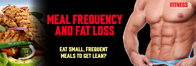 Meal Frequency and Fat Loss