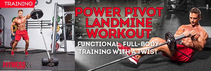Power Pivot Landmine workout rotator new