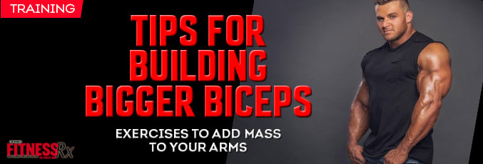 Tips for Building Bigger Biceps