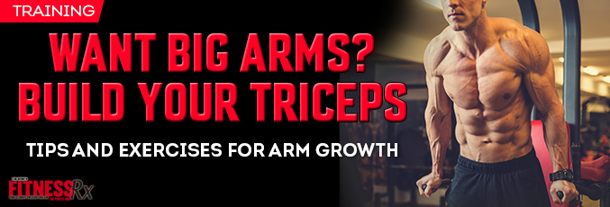 Want Big Arms? Build Your Triceps