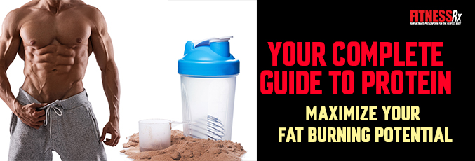 Your Complete Guide to Protein