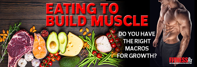 Eating to Build Muscle
