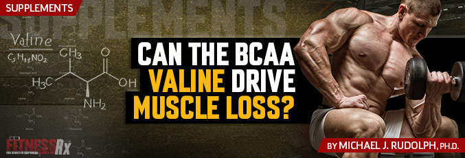 Can the BCAA Valine Drive Muscle Loss?