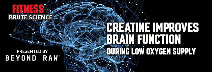 Creatine Improves Brain Function During Low Oxygen Supply