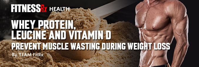 Whey Protein, Leucine and Vitamin D Prevent Muscle Wasting During Weight Loss