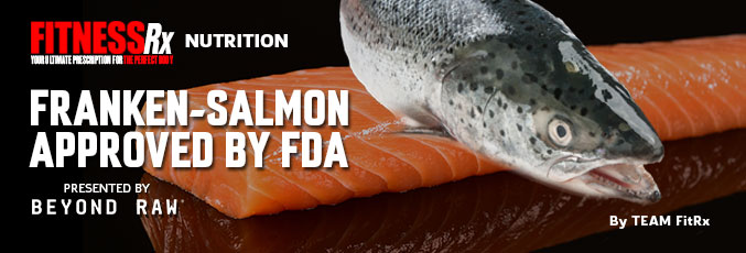 Franken-Salmon Approved by FDA