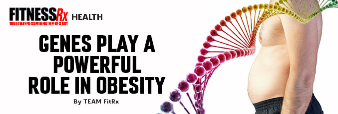 Genes Play a Powerful Role in Obesity