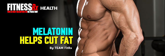 Melatonin Helps Cut Fat