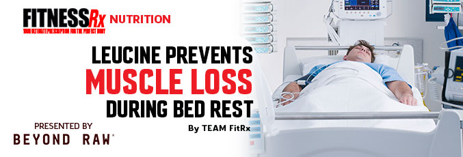 Leucine Prevents Muscle Loss During Bed Rest