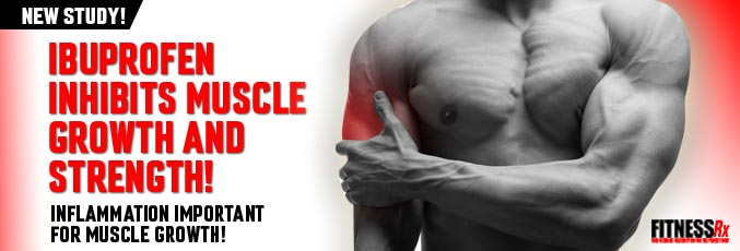 Ibuprofen Inhibits Muscle Growth and Strength!
