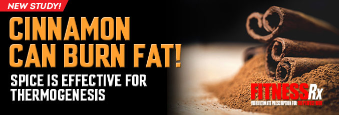 Cinnamon Can Burn Fat!