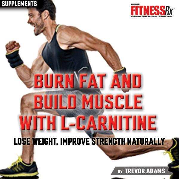 Burn Fat and Build Muscle With L-Carnitine - Lose Weight, Improve Strength Naturally