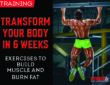 Transform Your Body in 6 Weeks