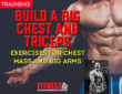 Build a Big Chest and Triceps